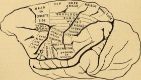 Зачем людям психология
