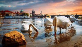 Нетуристическая Прага: интересные места в чешской столице