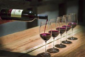 Все о вине и искусстве пить с умом и пользой для здоровья!
